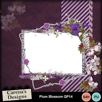 Plum-blossom-qp14