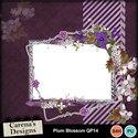 Plum-blossom-qp14_small