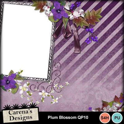 Plum-blossom-qp10