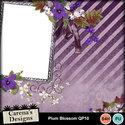 Plum-blossom-qp10_small