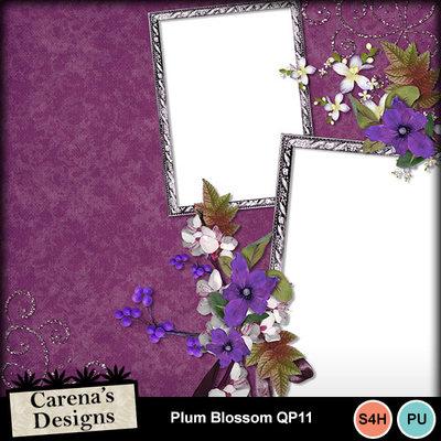 Plum-blossom-q11