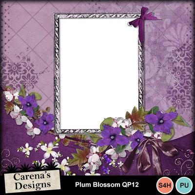 Plum-blossom-q12