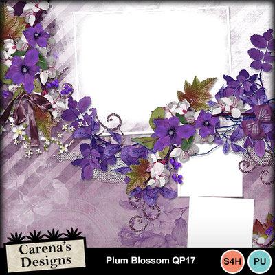 Plum-blossom-qp17