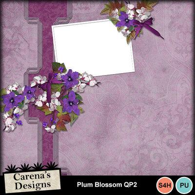 Plum-blossom-qp2