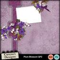 Plum-blossom-qp2_small