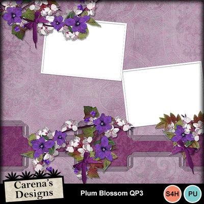 Plum-blossom-qp3