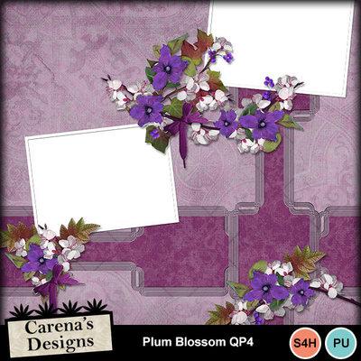 Plum-blossom-qp4