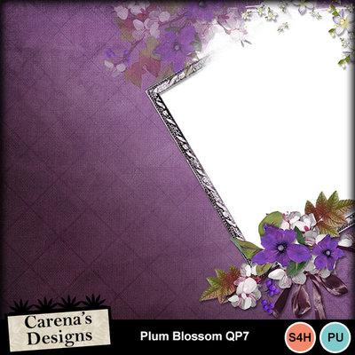 Plum-blossom-qp7