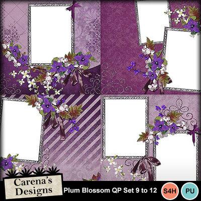 Plum-blossom-qp9-12