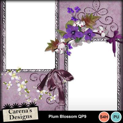 Plum-blossom-qp9