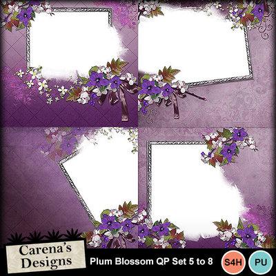 Plum-blossom-qp5_8-copy
