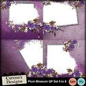 Plum-blossom-qp5_8-copy_small