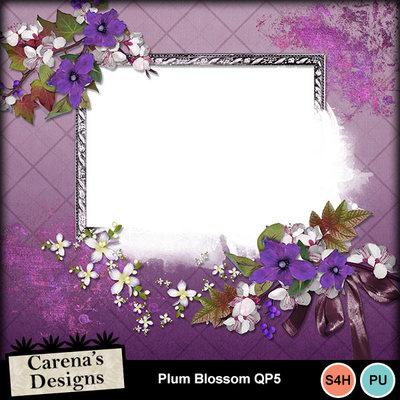 Plum-blossom-qp5