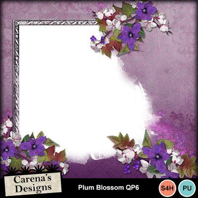 Plum-blossom-qp6