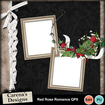 Red-rose-romance-qp5