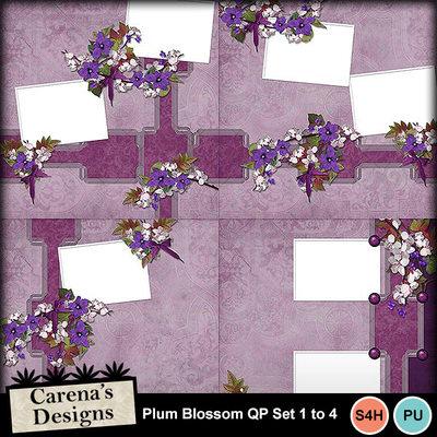 Plum-blossom-qp1to4