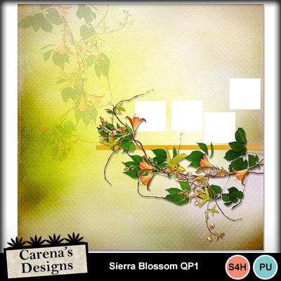 Sierra-blossom-qp1
