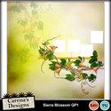Sierra-blossom-qp1_small