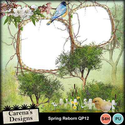 Spring-reborn-qp12