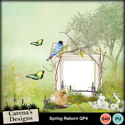 Spring-reborn-qp4