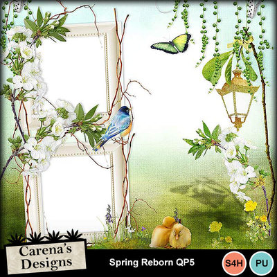 Spring-reborn-qp5