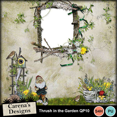 Thrush-in-the-garden-qp10