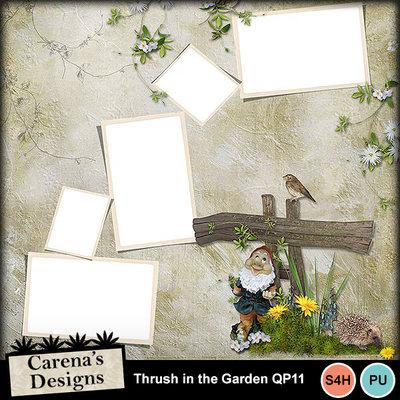 Thrush-in-the-garden-qp11