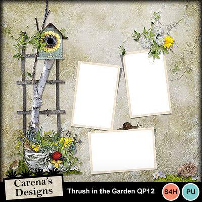Thrush-in-the-garden-qp12