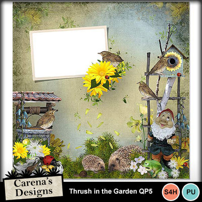 Thrush-in-the-garden-qp5
