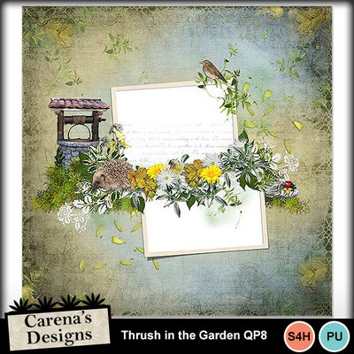 Thrush-in-the-garden-qp8