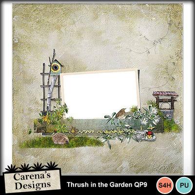 Thrush-in-the-garden-qp9