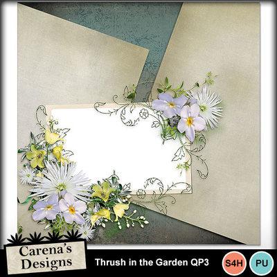 Thrush-garden-qp3