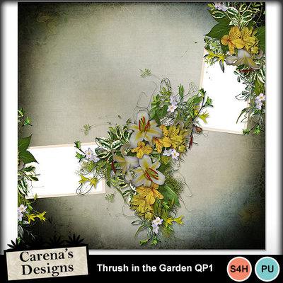 Thrush-in-the-garden-qp1