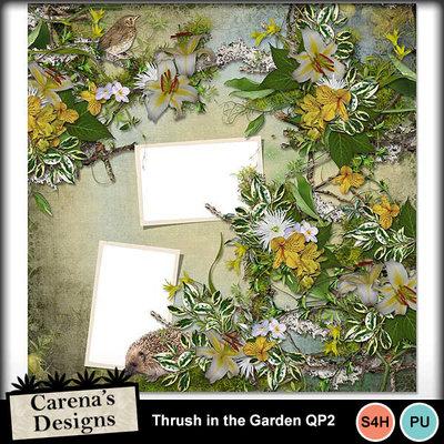 Thrush-in-the-garden-qp2