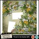 Thrush-in-the-garden-qp2_small