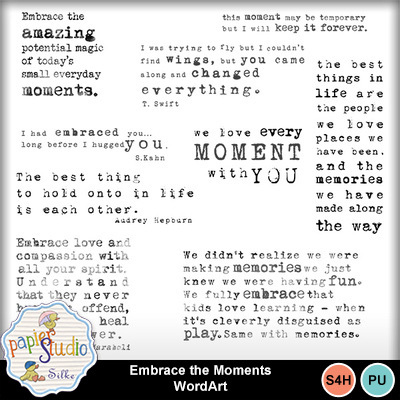 Embrace_the_moment_wordart