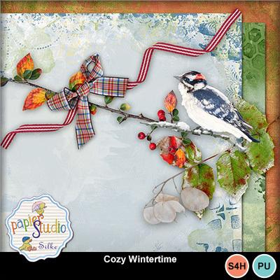 Cozy_wintertime