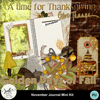 Pdc_mmnewweb-nov_journal_mini