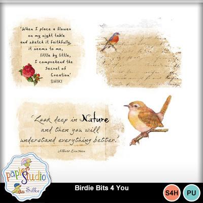 Birdie_bits_4_you