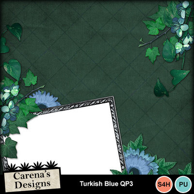 Turkish-blue-qp3