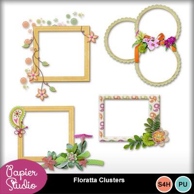 Floratta_clusters