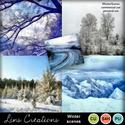 Winterscenes_small