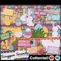 Cottontail-1_small