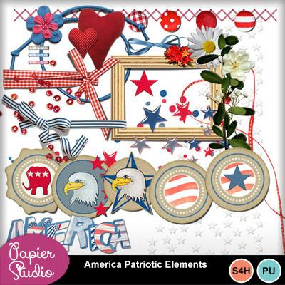 America_patriotic_elements