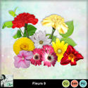 Louisel_cu_fleurs9_preview_small