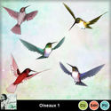 Louisel_cu_oiseaux1_preview_small
