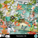 Patsscrap_fascination_pv_kit_small