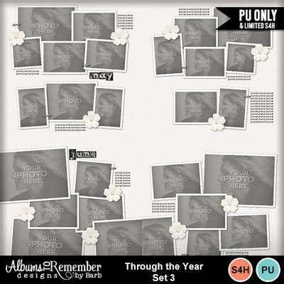 Throughtheyearset3_main