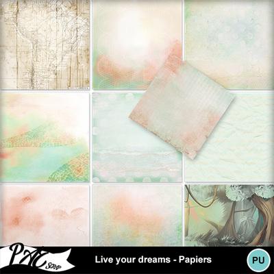 Patsscrap_live_your_dreams_pv_papiers