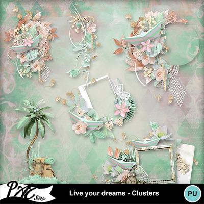 Patsscrap_live_your_dreams_pv_clusters